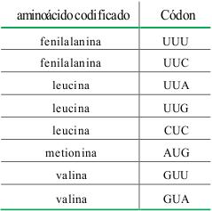 prova-matematica-UERJ-2013-1-27