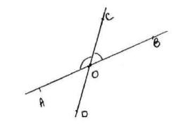 saresp-prova-matematica-7-ano-2011-52